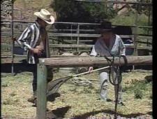 Трахнул девушек на ранчо